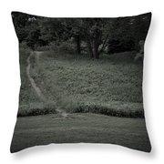 A Path Traveled Throw Pillow