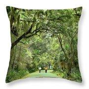 A Peaceful Walk Throw Pillow