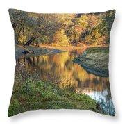 A Peak At Autumn Throw Pillow