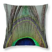 A Peek At A Peacock Feather Throw Pillow