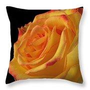 A Perfect Rose #2 Throw Pillow