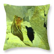 A Perky Chipmunk  Throw Pillow