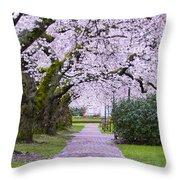 A Pink Pathway Throw Pillow
