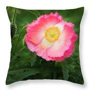 A Pink Poppy Portrait. Throw Pillow