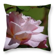 A Pink Rose  Throw Pillow