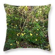 A Place Along The Way To Stop And Rest Throw Pillow by Eikoni Images