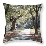 A Place For Contemplation  Throw Pillow