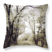 A Place For Dreams To Stay Forever Throw Pillow