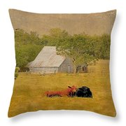 A Place For Togetherness Throw Pillow by Jan Amiss Photography