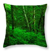 A Place In The Forest Throw Pillow