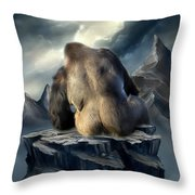 A Place To Be Throw Pillow