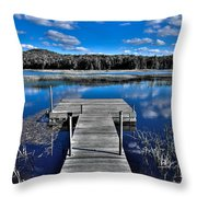 A Place To Dock On The Moose Throw Pillow