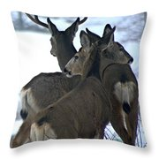 A Place To Rest Your Head Throw Pillow