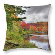 A Place To View Autumn Throw Pillow