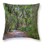 A Pleasant Stroll Throw Pillow