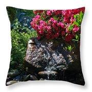 A Pleasing Spot Throw Pillow