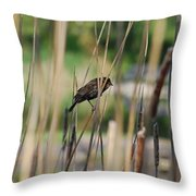 A Plumage Sparrow Throw Pillow