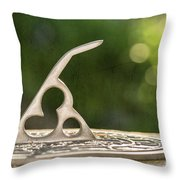 A Point In Time Throw Pillow