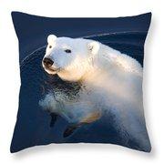 A Polar Bear Glance Throw Pillow