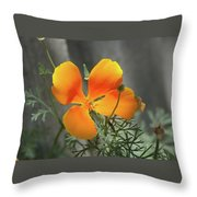 A Poppy Unfurled  Throw Pillow
