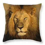 A Portrait Of A Male Throw Pillow