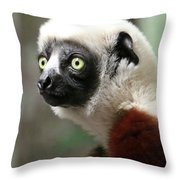 A Portrait Of A Sifaka Primate, A Large Lemur Throw Pillow