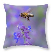 A Practice In Patience Throw Pillow