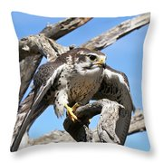 A Prairie Falcon Against A Blue Sky Throw Pillow