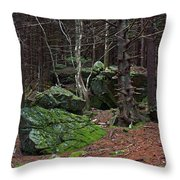 A Private Light Throw Pillow