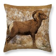 A Proud Ram Throw Pillow