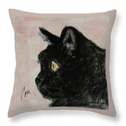 A Purrfect Vision Throw Pillow