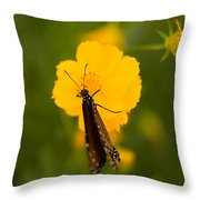 A Queen Butterfly At The Lincoln Throw Pillow