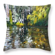A Quiet Afternoon Reflection Throw Pillow