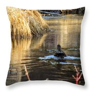 A Quiet Morning Swim Throw Pillow