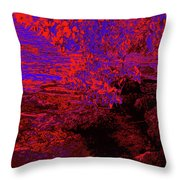 A Quiet Place 12 Throw Pillow
