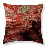 A Quiet Place 9 Throw Pillow