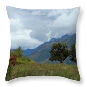 A Rainy Day In The Mountains Of Ecuador Throw Pillow