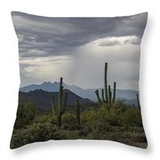 A Rainy Desert Afternoon  Throw Pillow