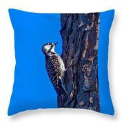 A Rare Bird Throw Pillow