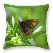 A Red Butterfly Perching  Throw Pillow