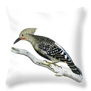 A Red Headed Woodpecker 2 Throw Pillow