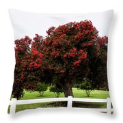 A Red Pin Under A Red Tree At Morro Bay Golf Course Throw Pillow