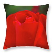 A Red Rose Unfolding  Throw Pillow
