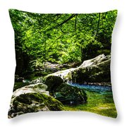 A Relaxing Place To Be Throw Pillow