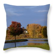 A Ring Of Water Throw Pillow