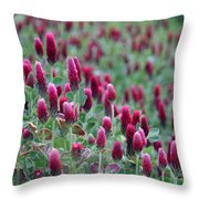 A Riot Of Red Clover Throw Pillow