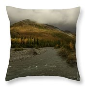 A River Runs Through The Brooks Range Alaska Throw Pillow