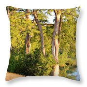 A River Walk Throw Pillow
