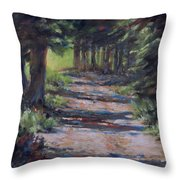 A Road Less Travelled Throw Pillow