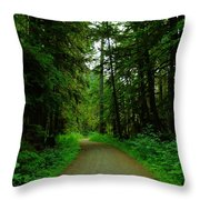 A Road Through The Forest Throw Pillow